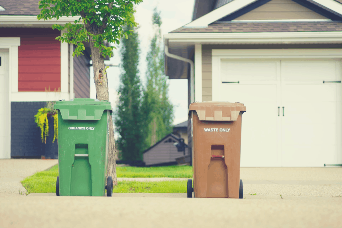 green and brown dustbins in front of homes